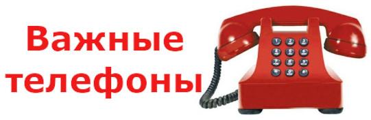 Важные телефоны